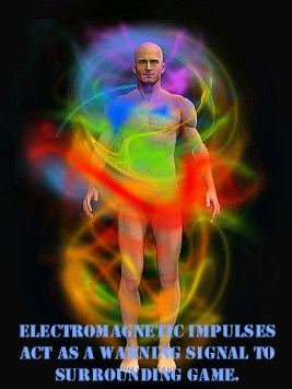 HECs suit - Electromagnetic Impulses