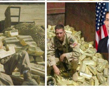 Cotton posing on stolen Iraq gold