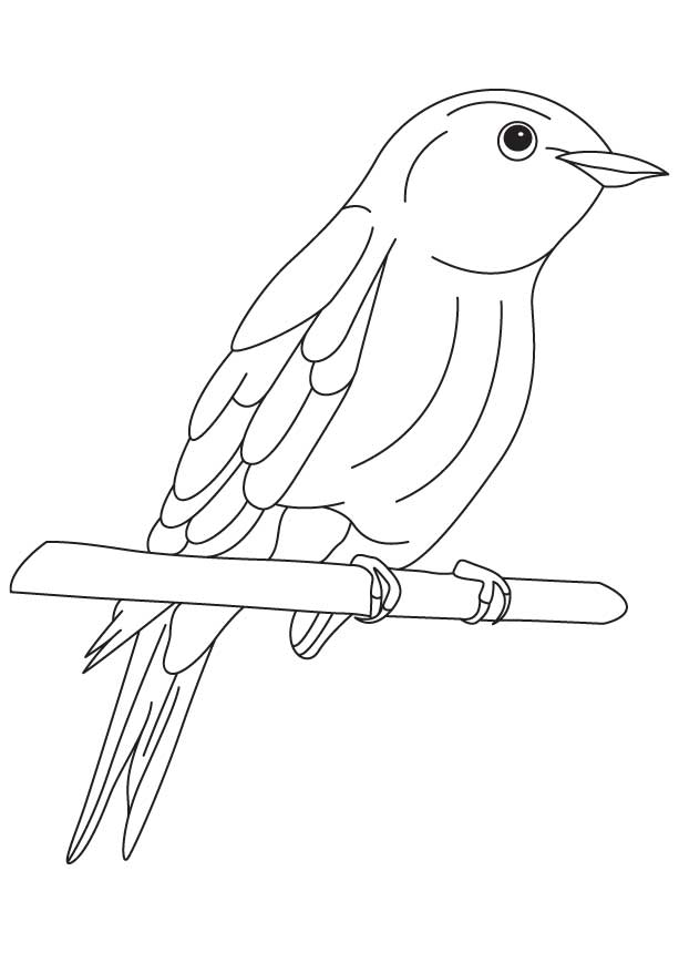 bluebird of happiness coloring page download free bluebird of