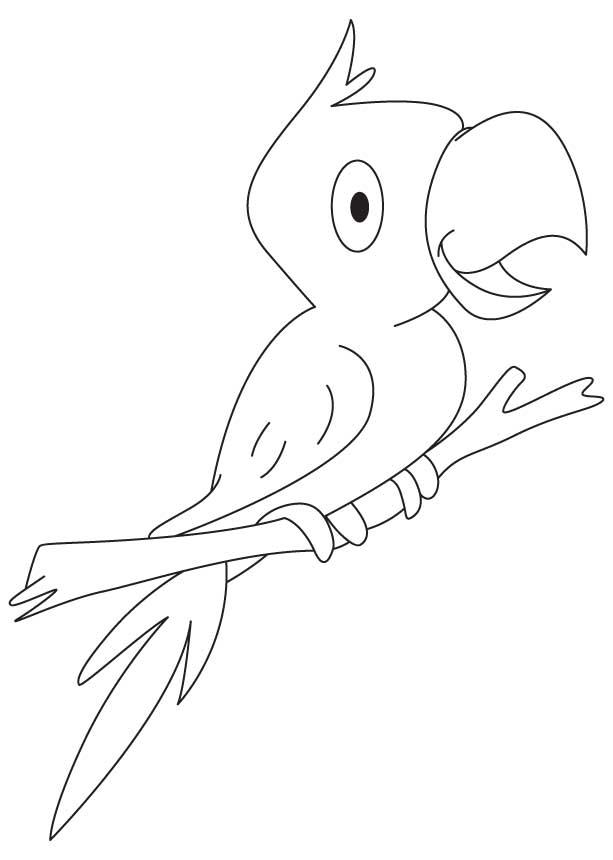 free indian parrot coloring page for kids best coloring pages