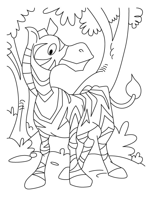 zebra waiting for his friend coloring page download free zebra