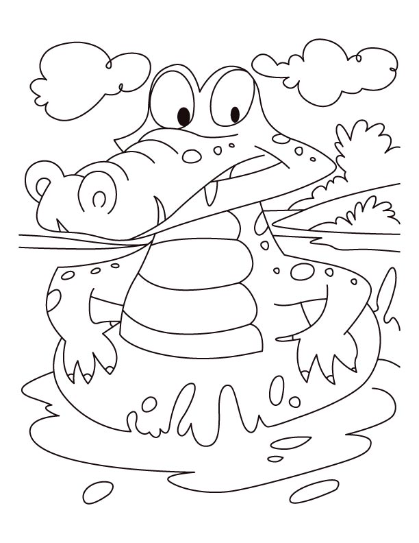 alligator on a swim drill coloring pages download free alligator