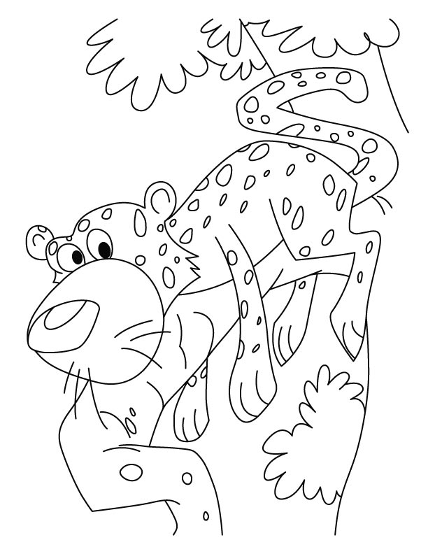 cheetah too scares coloring pages download free cheetah too