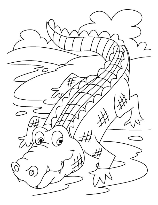 crocodile on a run coloring pages download free crocodile on a