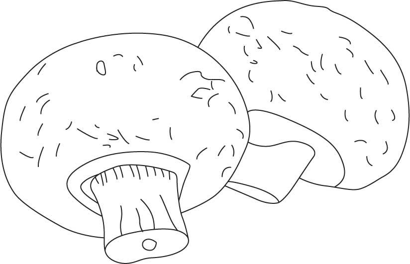 flower pot mushrooms coloring page download free flower pot