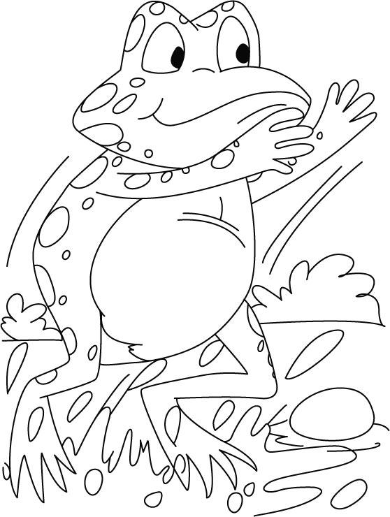 startling frog coloring pages download free startling frog