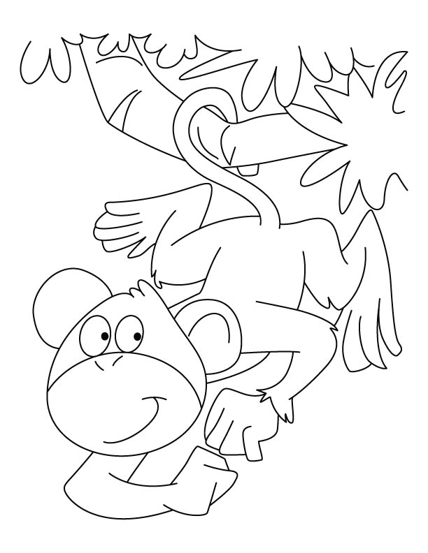 monkey coloring pages download free spider monkey coloring
