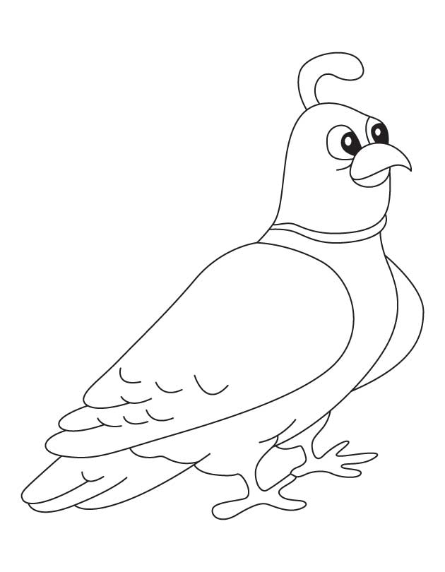 goose coloring pages furthermore rockhopper penguin coloring pages