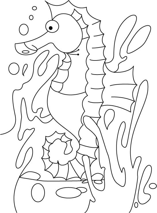 depressed seahorse coloring pages download free depressed