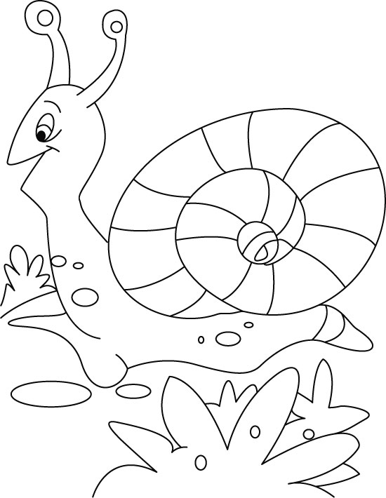 cute snail coloring pages cooloring com