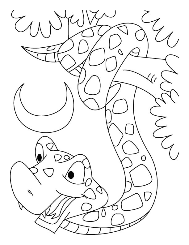 year of the snake coloring pages download free year of the snake