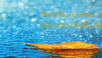 Girls Quote Fb Cover