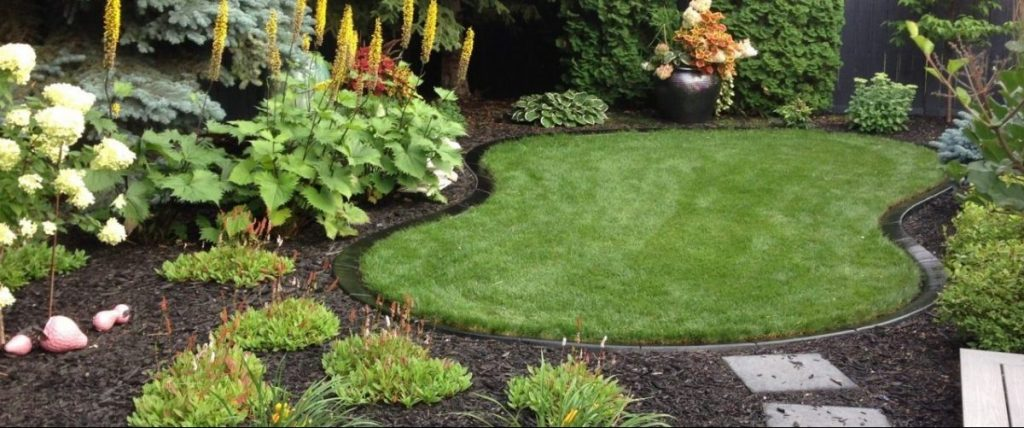 gorgeous back yard with simple peanut shape black curb