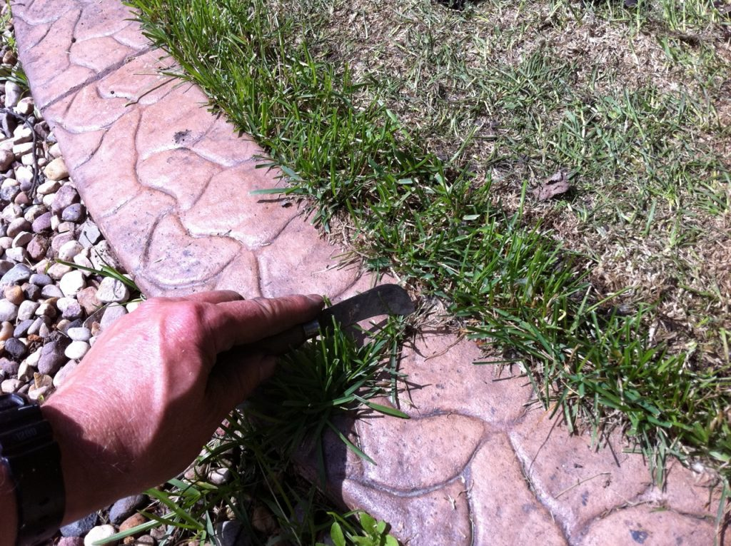 grass hooked out of gap in curb