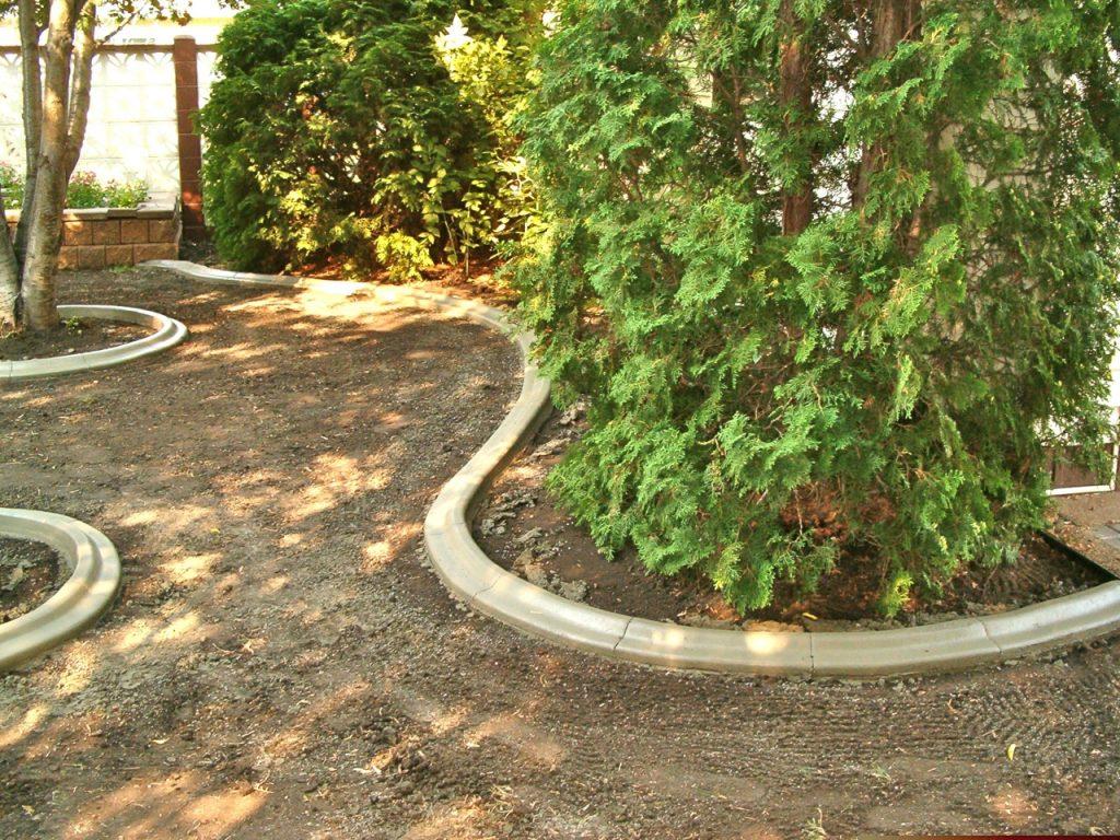renovated back yard curb