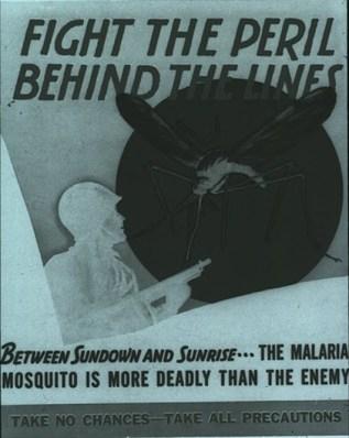 Army mosquito malaria