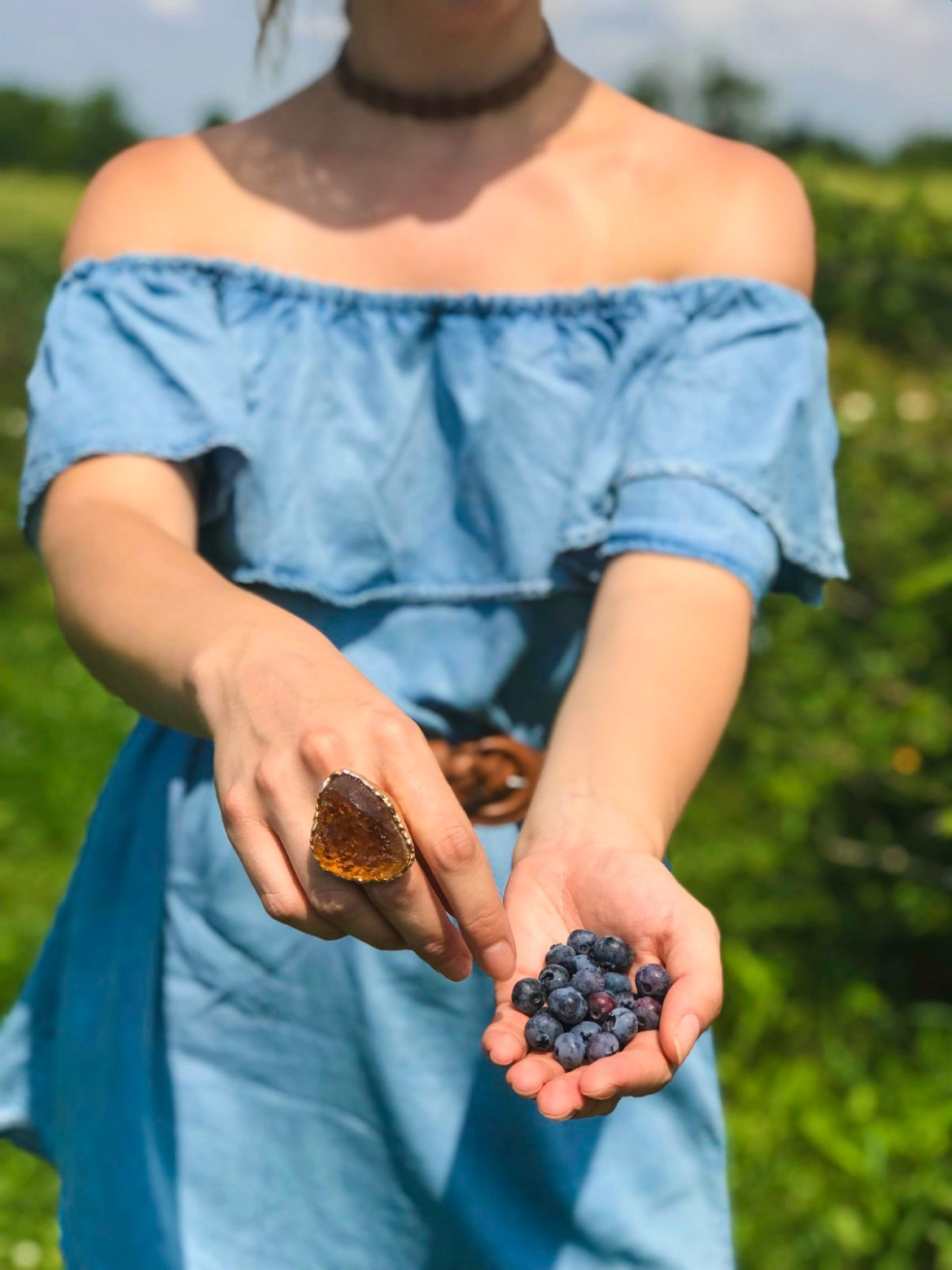 Go Berry Picking, Then Make Crumble