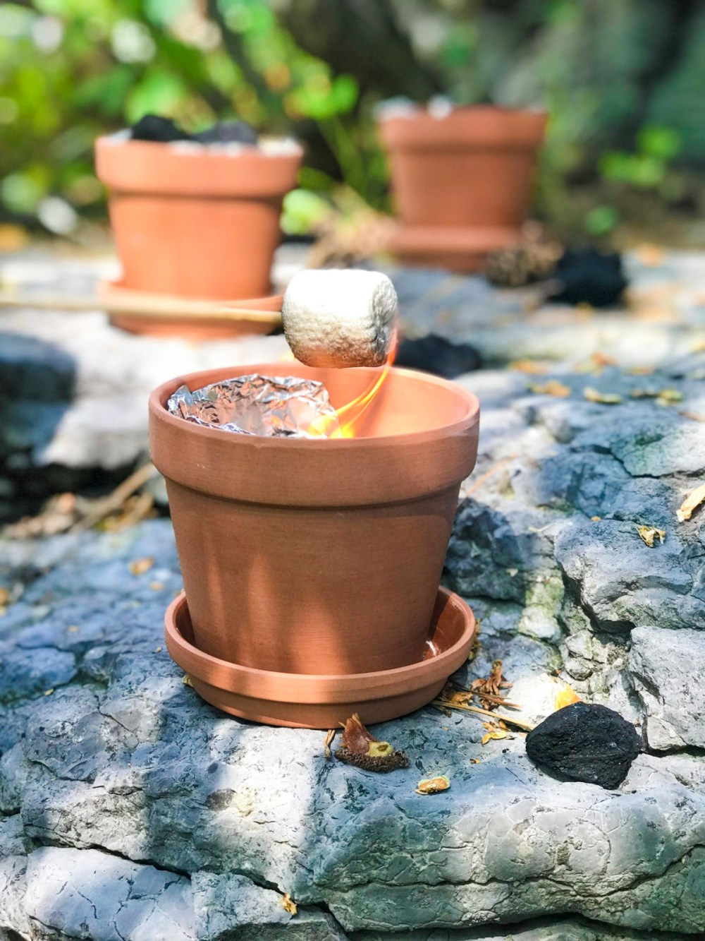 Camp in Your Backyard, Featuring DIY S'more Pots