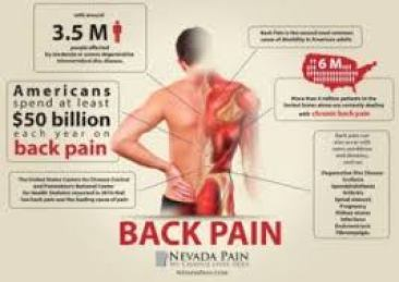 My Back Pain Coach Review