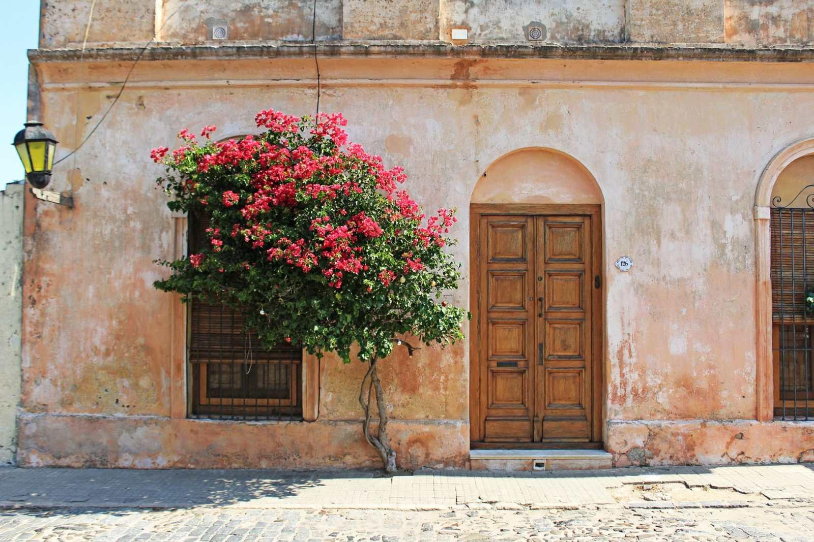 The Best Areas to Stay in Colonia del Sacramento, Uruguay