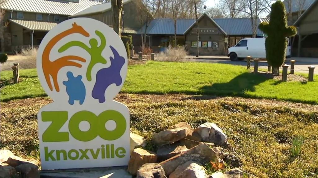 Where to stay in Knoxville, TN - East Knoxville