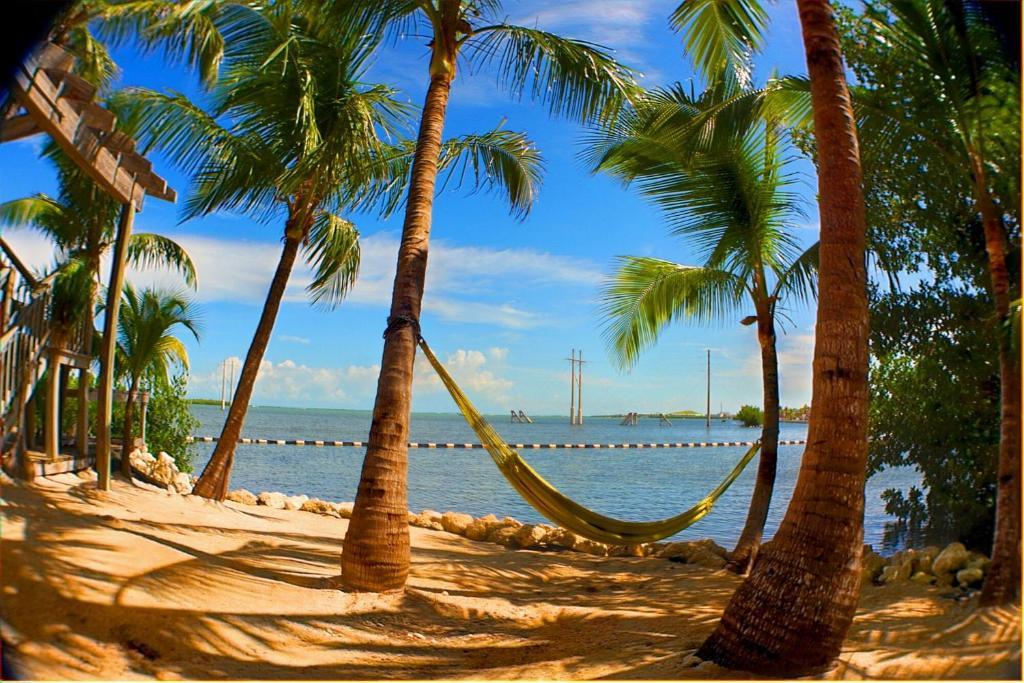 Mejor zona de playa donde quedarse en Cayo Hueso - South Key West