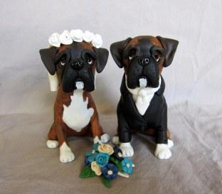 boxer dog Grooming