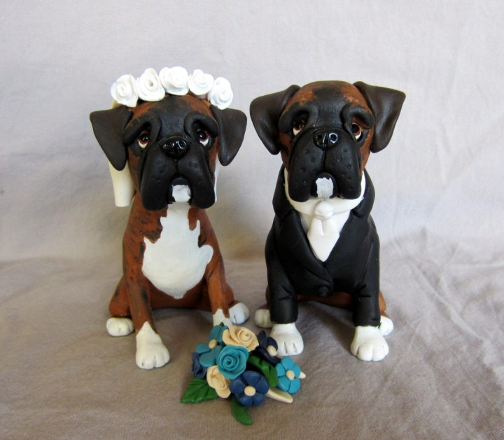 boxer dog Grooming
