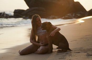boxer dog summer care