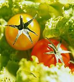калорийность продуктов, калорийность продуктов питания