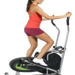 Body Rider Fan Elliptical Trainer Reviews