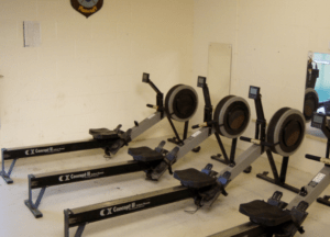rowing machine are great for upper and lower body