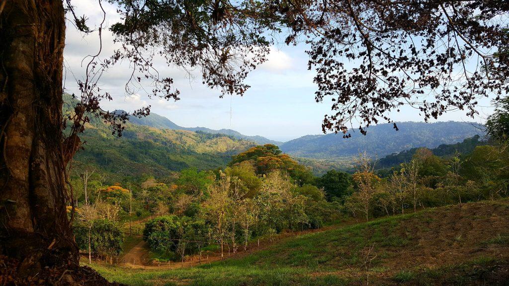 Costa Ricaanse platteland