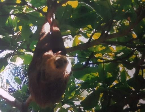 Natuwa Costa Rica