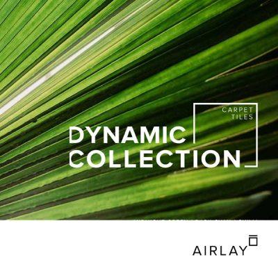 Dynamic - Brochure-Cover_600