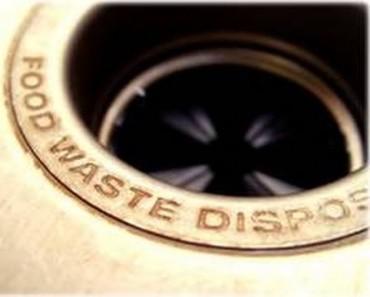 Home Depot Garbage Disposal