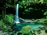 Dominica Family Vacations