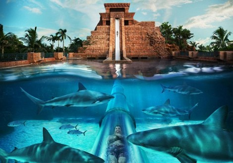 Atlantis Bahamas Waterslides