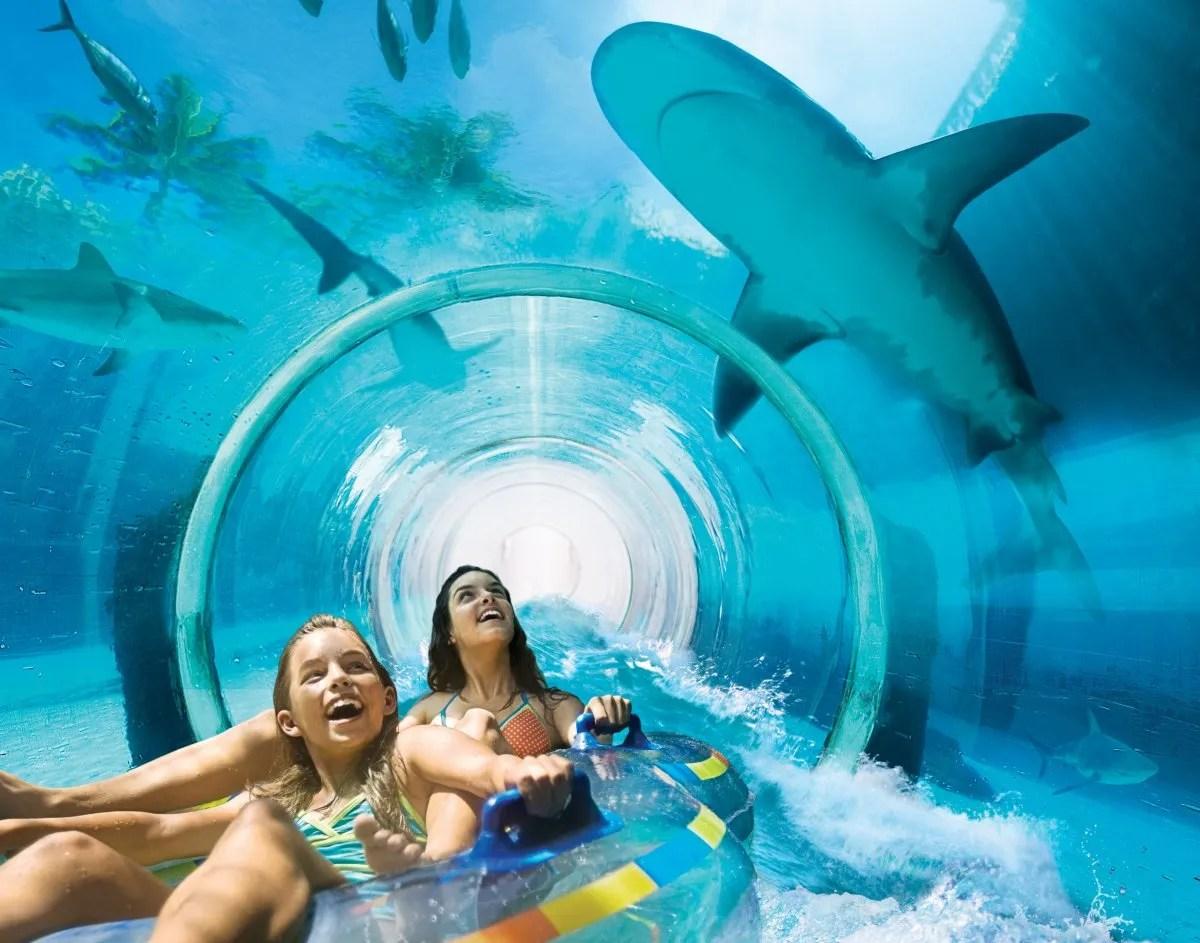 8 Stunning Reasons to Visit Atlantis Bahamas - https ...