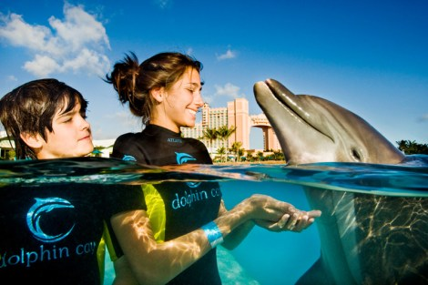 Marine adventure at Atlantis Bahamas