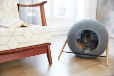 modern cat bed