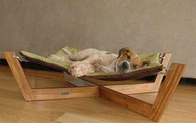 Unique Types of Luxury Pet Furniture