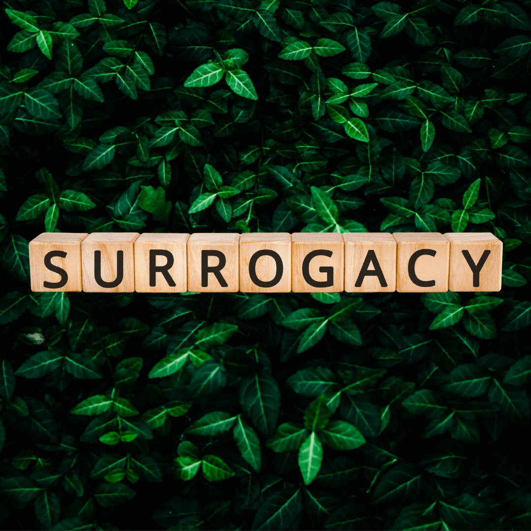 surrogacy spelled out in wooden blocks on dark green forest background, illustraiting the making familes surrogacy section of best fertility now