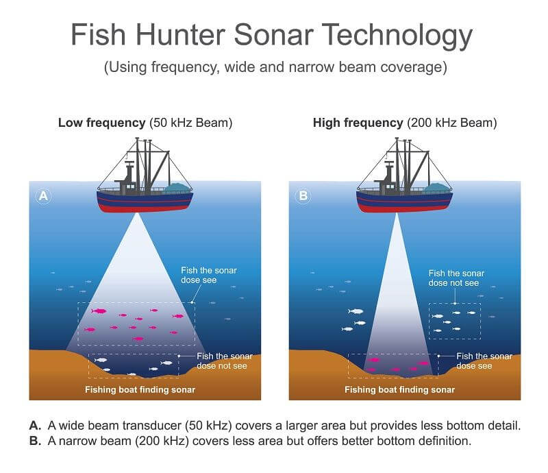 How To Choose A Fish Finder