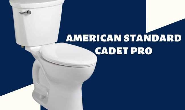 American Standard Cadet Pro