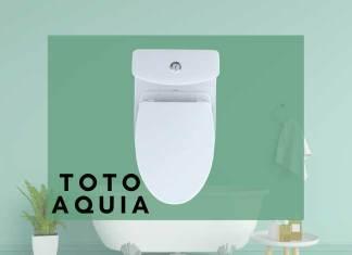 Toto Aquia