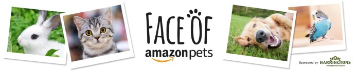 Face of Amazon Pets Winner Announced