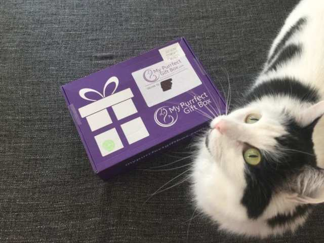 My Purrfect Gift Box review