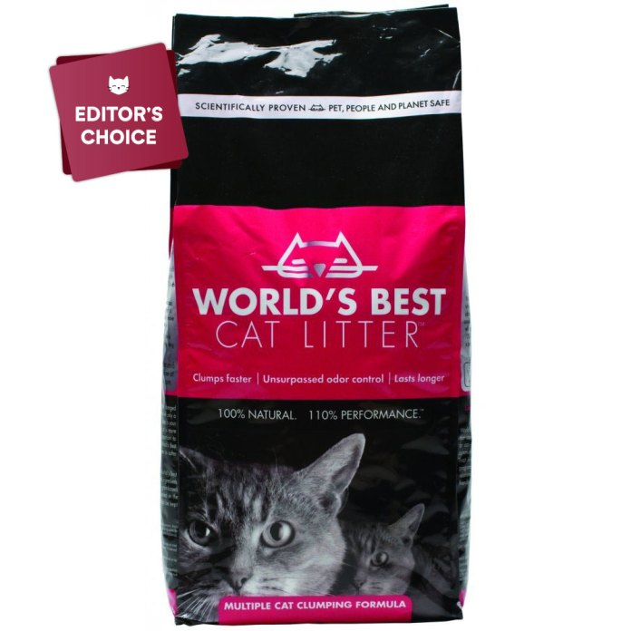 Worlds Best Cat Litter — The best cat litter for indoor cats