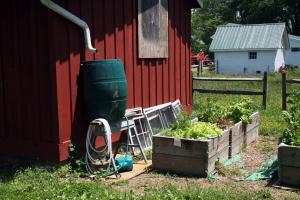 Benefits of a Rain Barrel